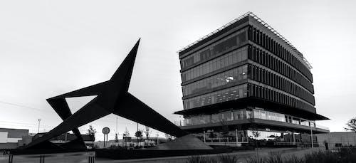 Kostnadsfri bild av 6 våningar, arquitecture, byggnad, chihuahua