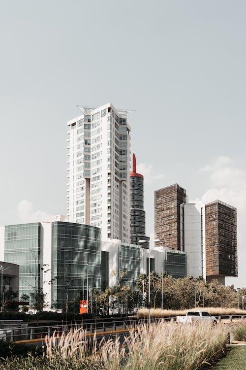 Modern buildings near road in city