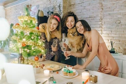 Foto profissional grátis de alegre, alegria, amizade