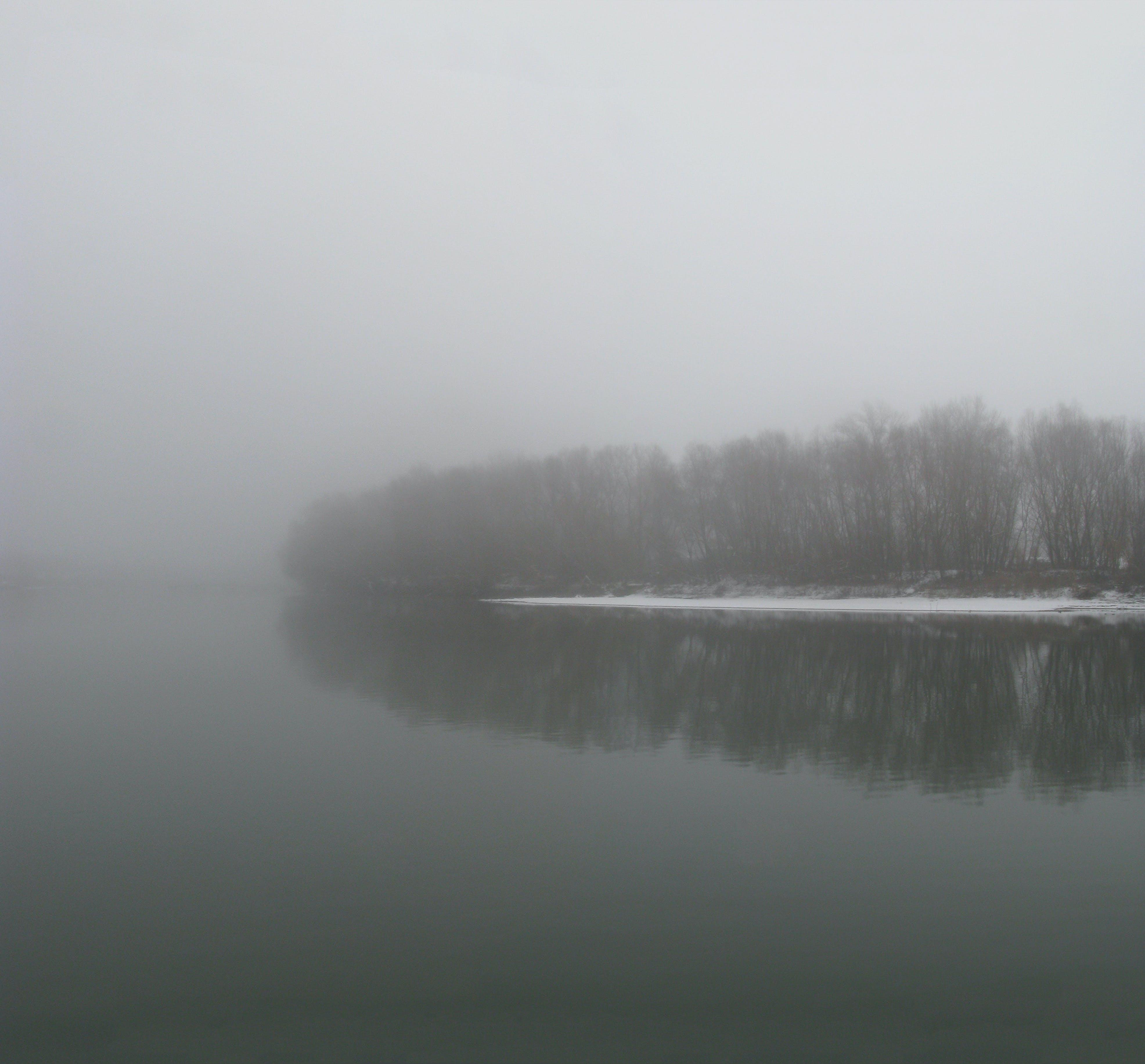 Free stock photo of fog, foggy, frozen, grey sky