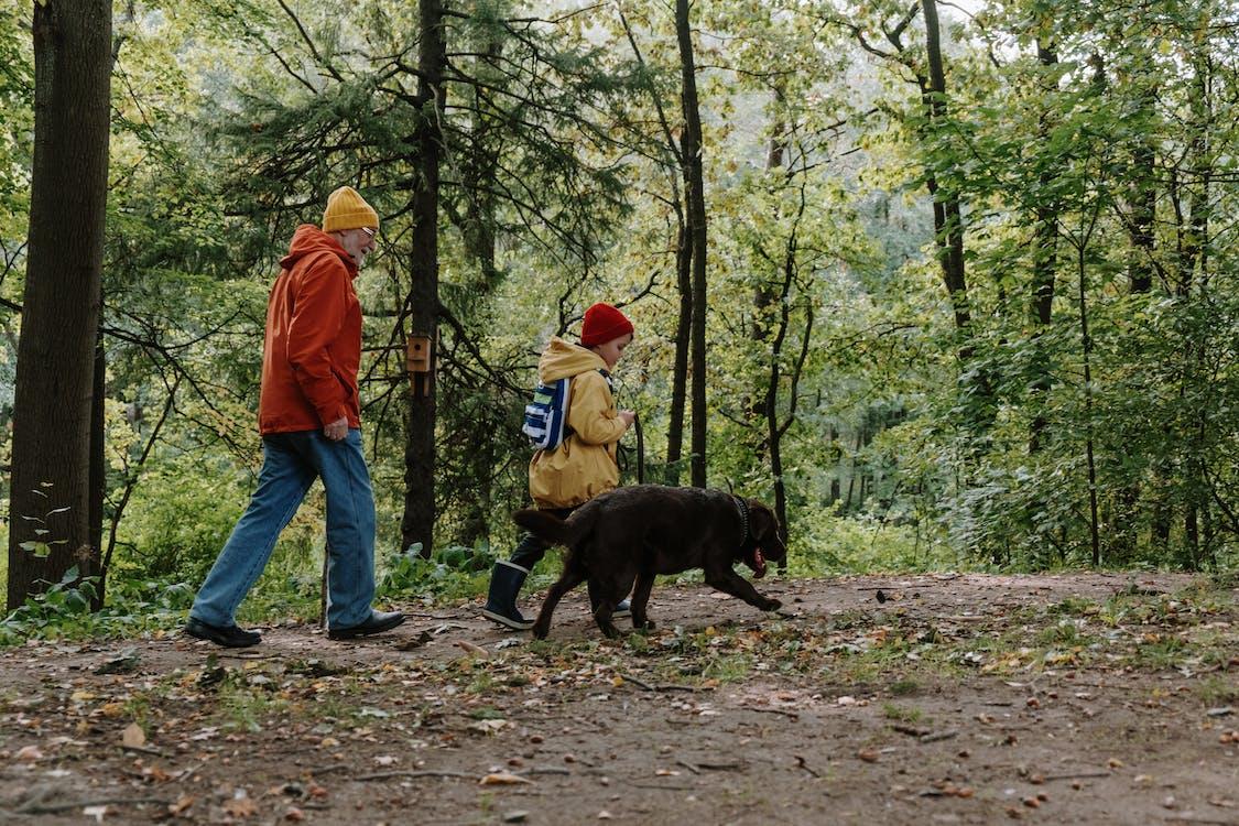 Mann In Der Orangefarbenen Jacke Und In Den Blauen Jeans, Die Mit Dem Schwarzen Kurzen Beschichteten Hund Auf Wald Gehen