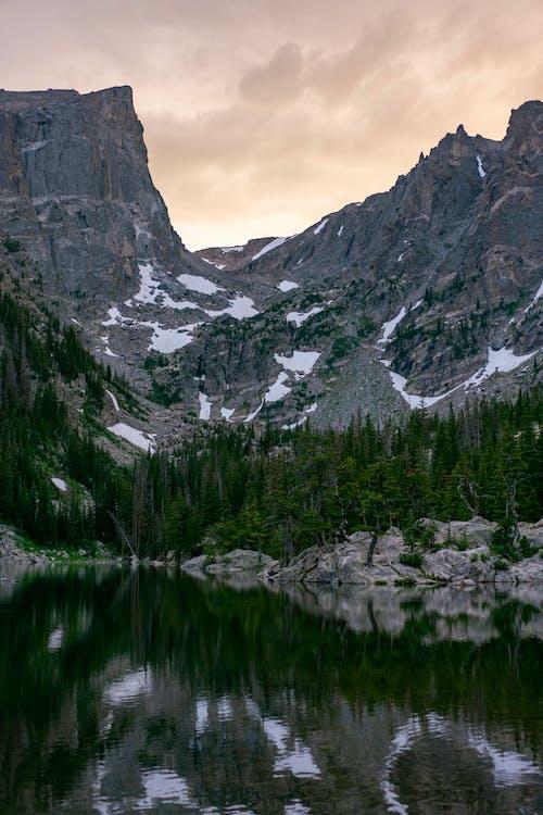 Green Trees Near Lake and Mountain