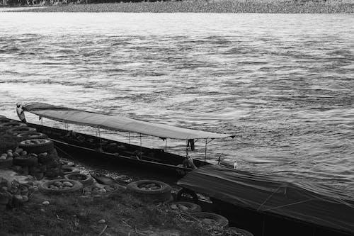 Free stock photo of amazon river, amazon tour, tour boat
