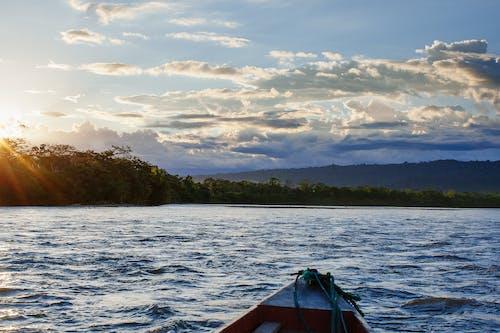 Free stock photo of amazon jungle water, amazon river, amazon river boat
