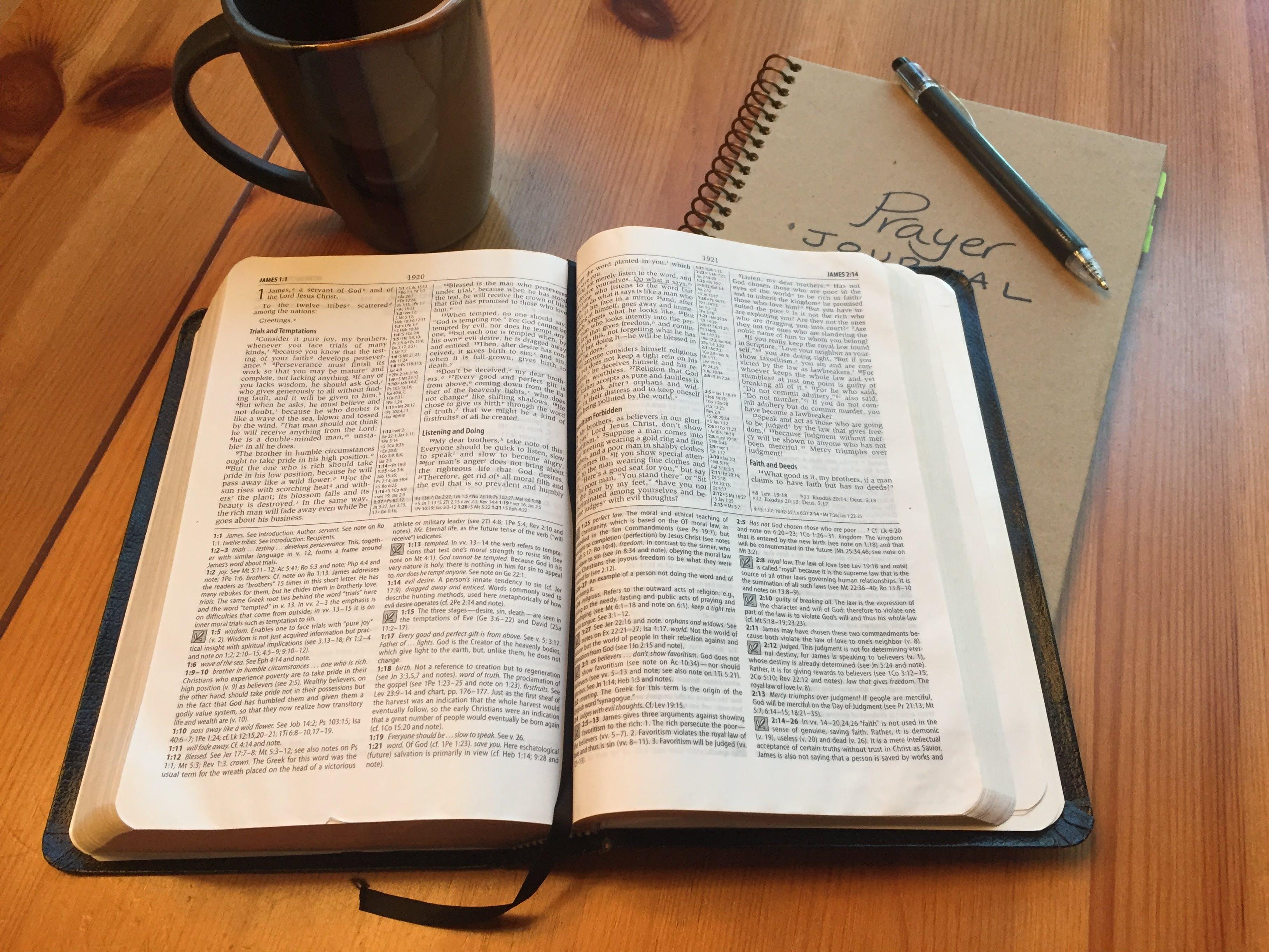 Free stock photo of bible, journal, prayer, open bible