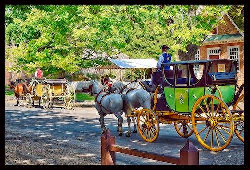 cariage, 假期, 威廉斯堡, 殖民 的 免費圖庫相片