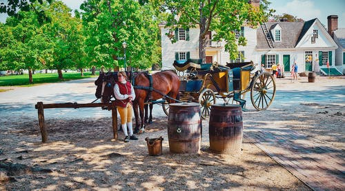 Free stock photo of carriage, colonial, williamsburg