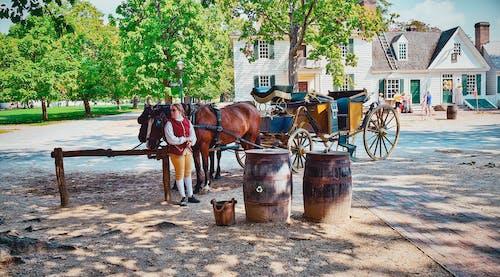 威廉斯堡, 殖民, 馬車 的 免費圖庫相片
