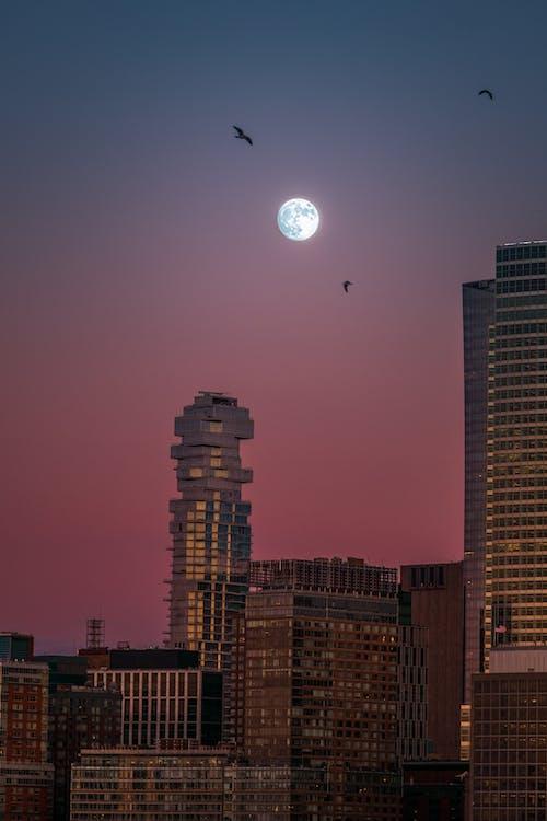 Foto stok gratis artis, Bima Sakti, bintang, bulan