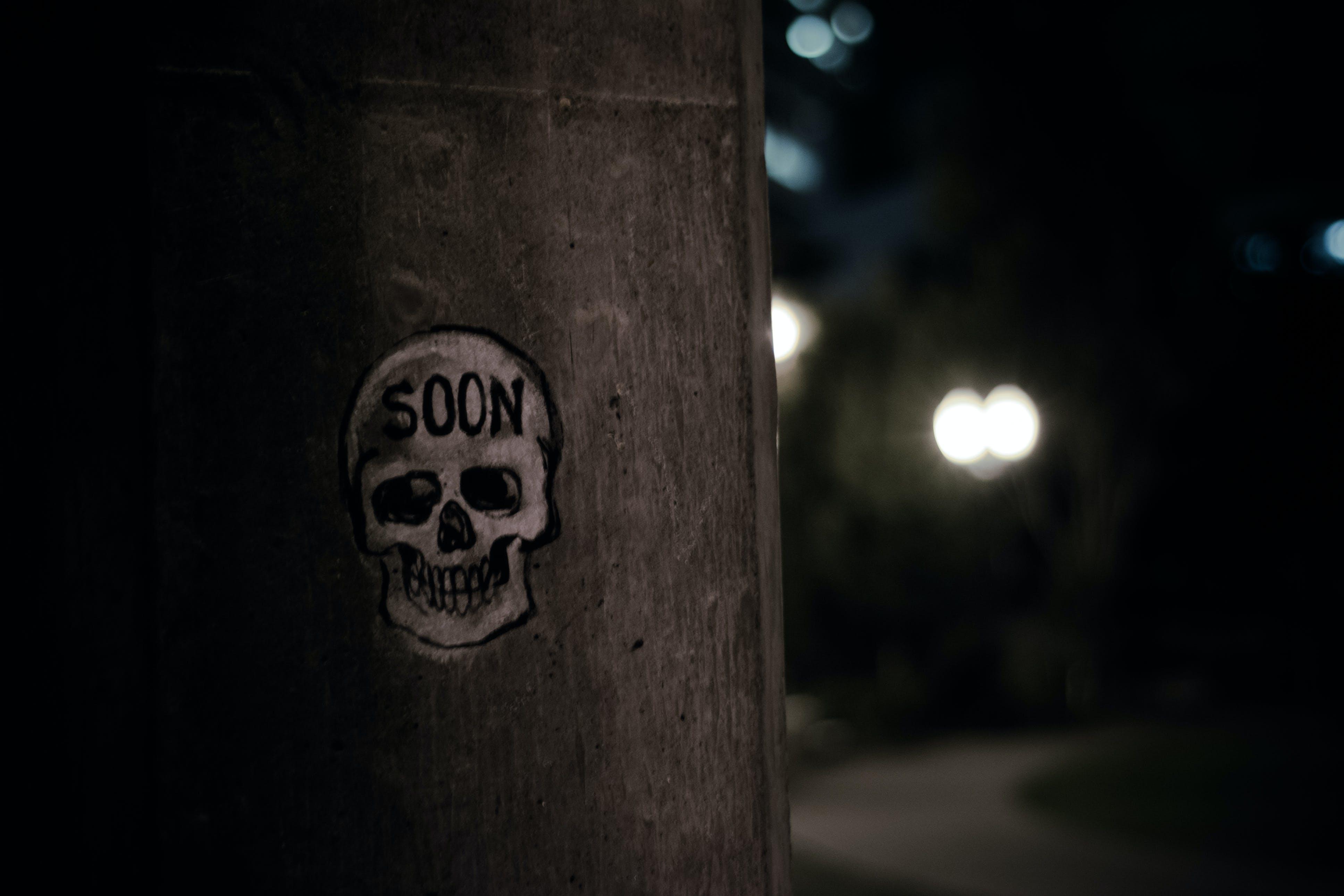 Free stock photo of graffiti, skull, urban