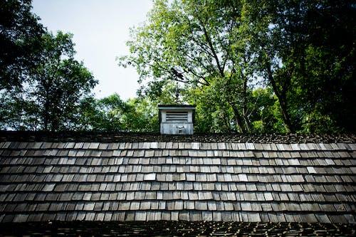 Imagine de stoc gratuită din agitați acoperisul, fermă, hambar