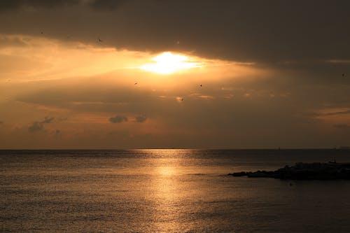 シースケープ, シルエット, ビーチの無料の写真素材