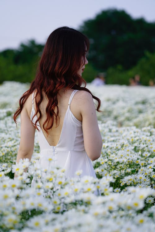 Tender ethnic teen among blossoming chamomiles in field