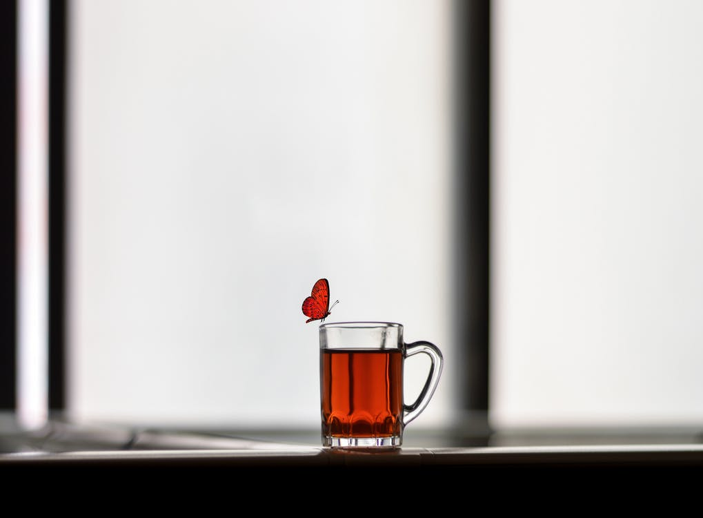 Butterfly Perched on Edge of Drinking Glass