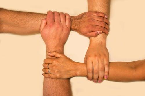 Gratis stockfoto met eenheid, eensgezindheid, evenwicht
