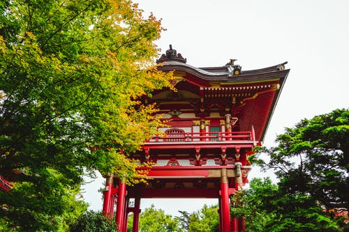 Facade of Japanese pagoda among lush vegetation in garden