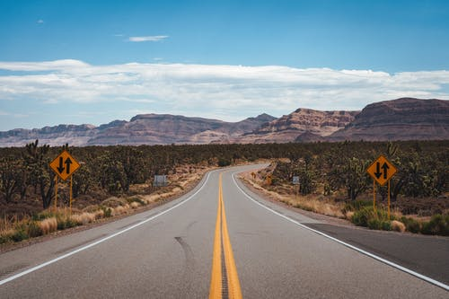 Asphalt road through cactus fields in mountainous valley
