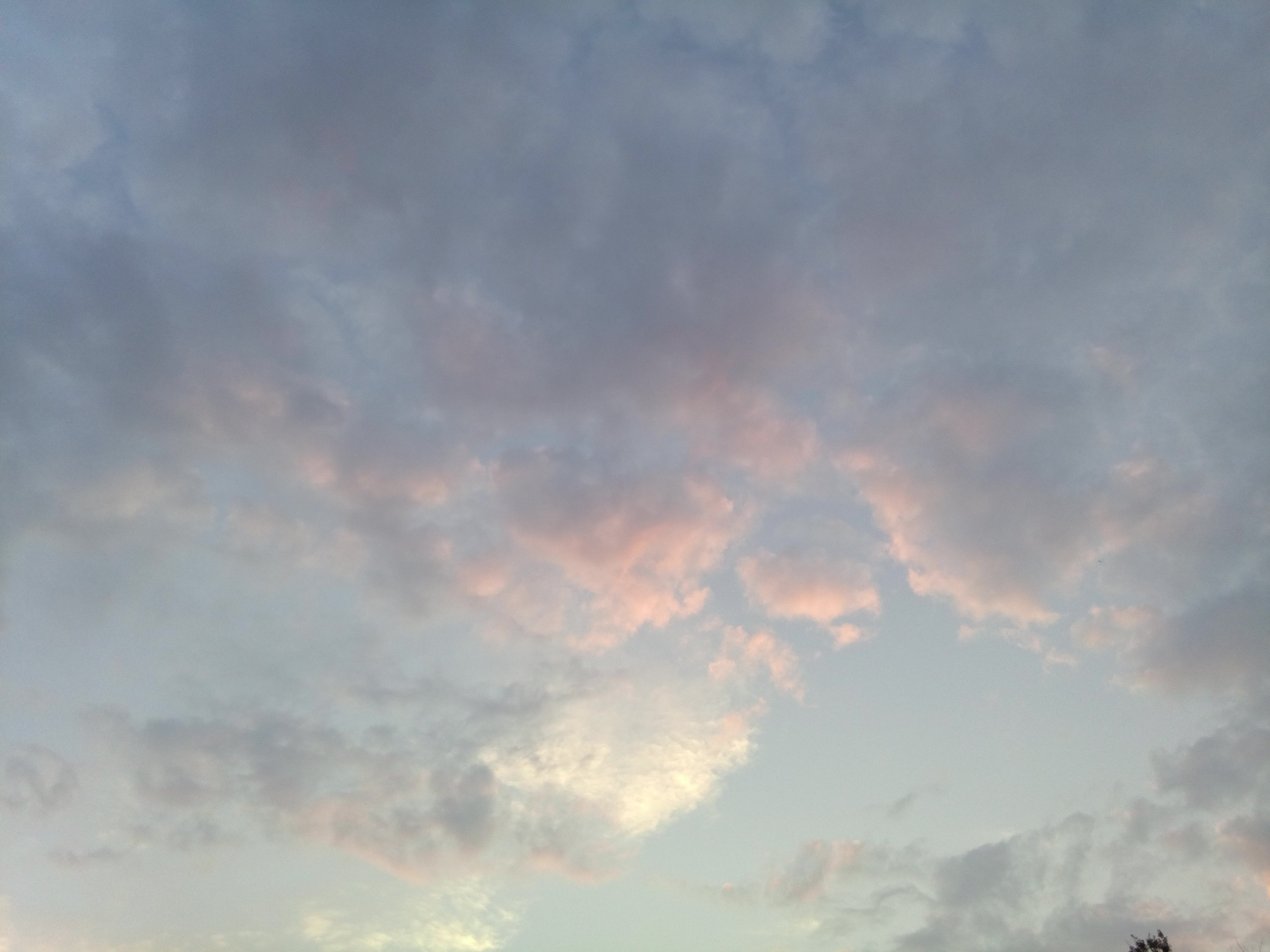 Free stock photo of clouds, cloudscape, dusk, pink clouds