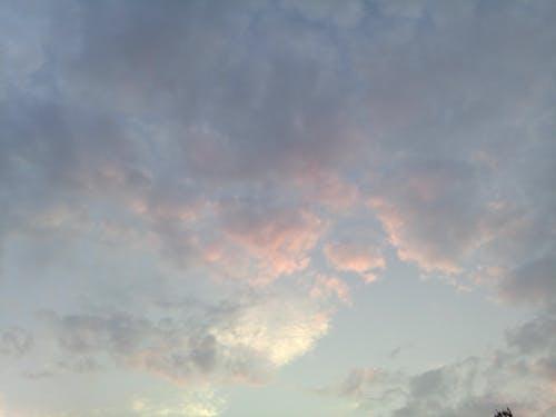 Ingyenes stockfotó felhők, felhőzet, rózsaszín felhők témában