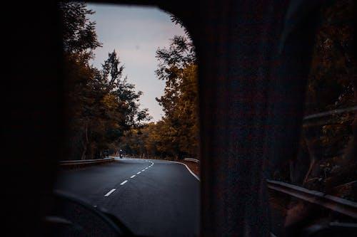 Car driving along road between autumn trees