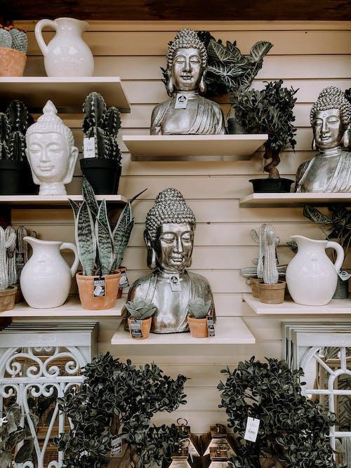 Kamerplanten En Boeddha Bustes Geplaatst Op Planken In Souvenirwinkel