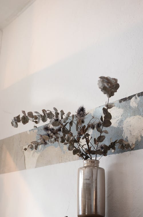 Vase with dried plants near wall in house