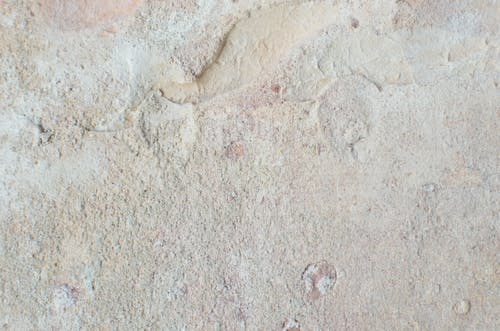 From above of abstract backdrop of old wall with beige stucco and uneven surface with dense texture