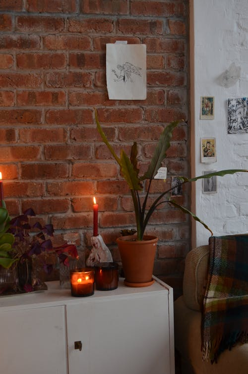 Interior of room in loft style with wooden cabinet decorated with potted plants and burning candles near sofa