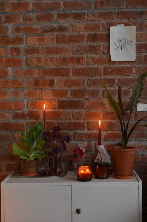 Burning candles for praying near potted plants