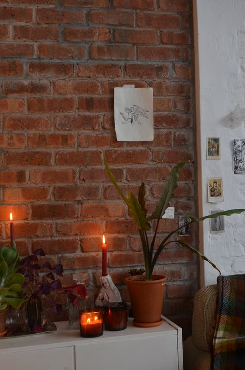 Interior of room with brick wall and burning candles near potted plants in loft style flat