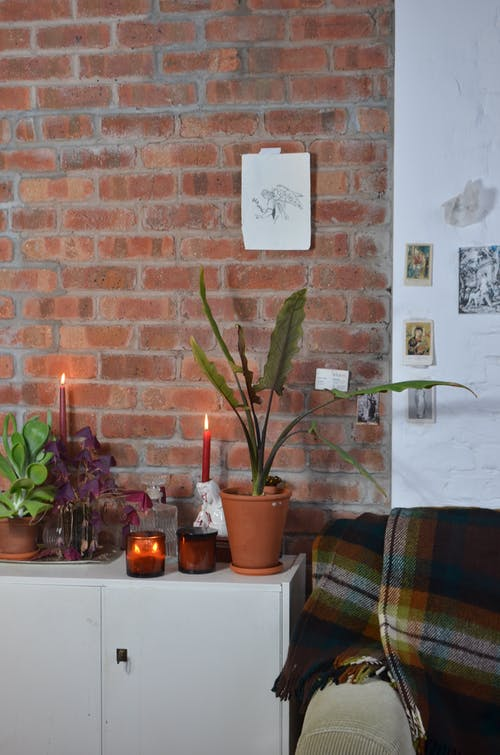 Interior of cozy room with cupboard decorated with potted plants and candles under brick wall with pictures in apartment