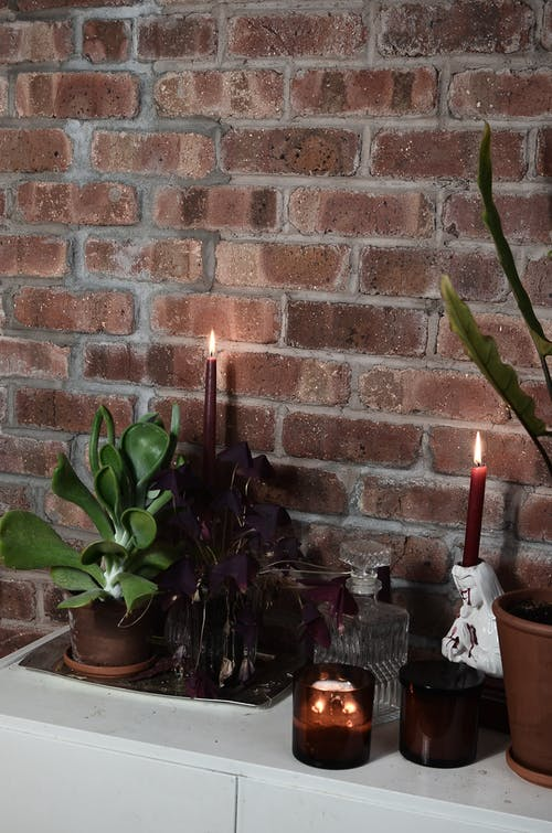 Flaming candles with potted plants against brick wall