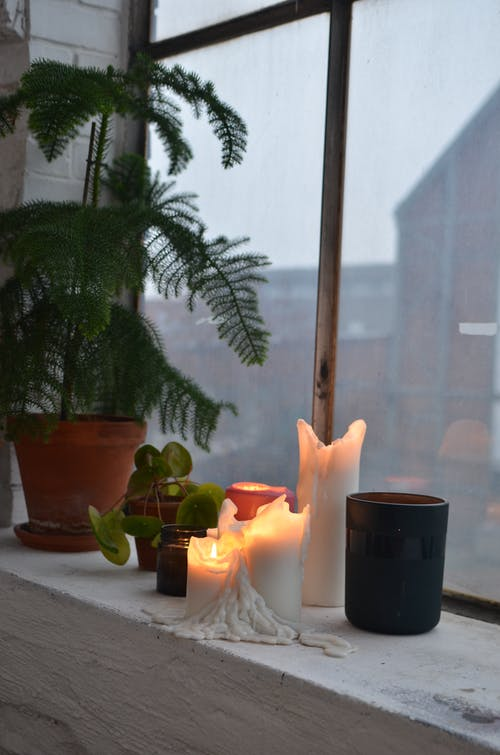 Flaming candles with potted plants on windowsill at home