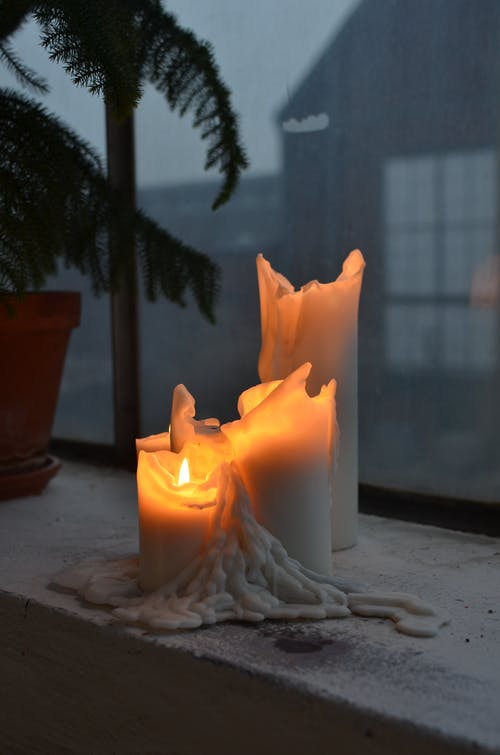 Flaming candles with melted wax near potted plant and window in house at night