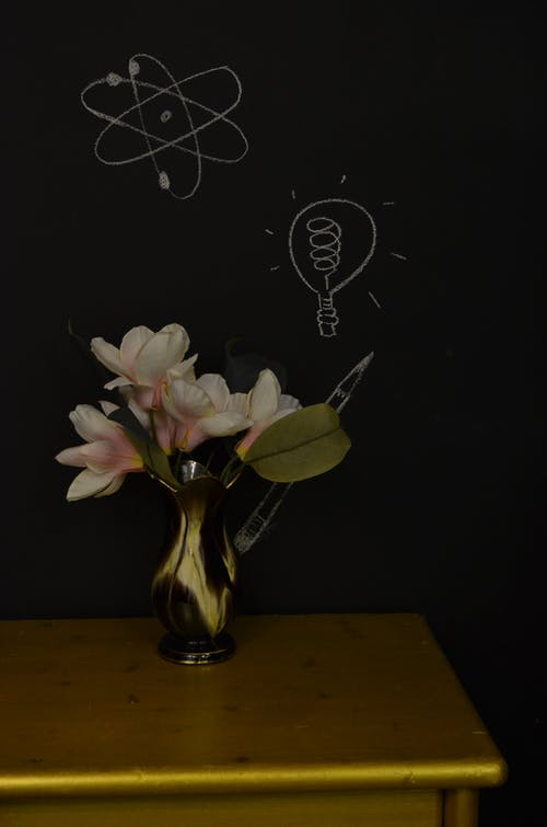 Vase of fresh blooming magnolia in vase placed on table against black wall with drawings