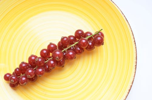 From above of ceramic plate with sprig of fresh red berries on white table