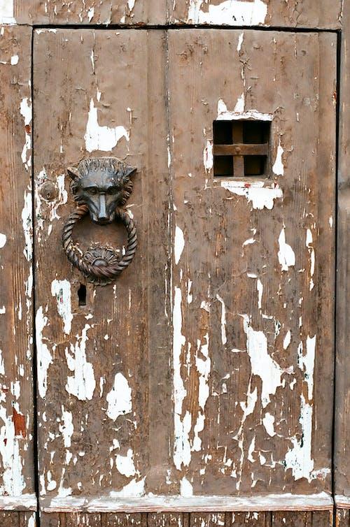 Free stock photo of architecture, door, door knocker