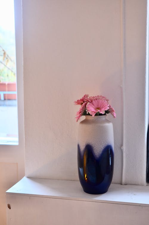 Bouquet of pink gerberas in white and blue ceramic vase placed on white stand near wall in room with window