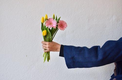 Person, Die Gelbe Und Rosa Blumen Hält