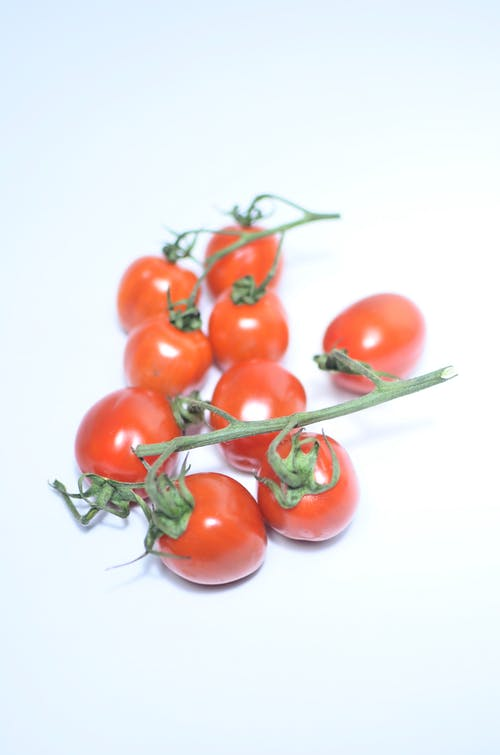 Pile of ripe tomatoes on branch