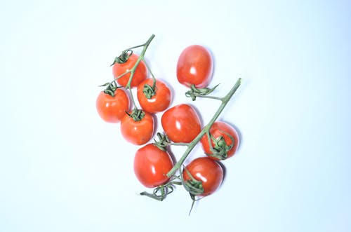 Heap of red tomatoes on branch