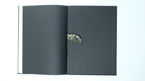 黑色和金色花書