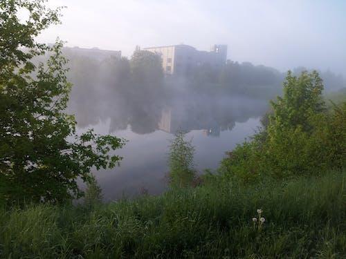 Free stock photo of fog, morning sun