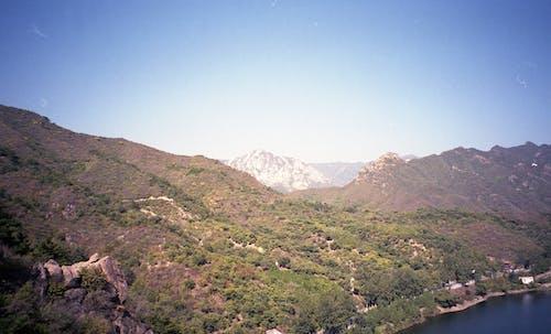 Arbres Verts Sur La Montagne Sous Le Ciel Bleu
