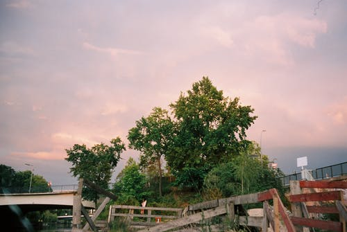 Picturesque scenery of bright sunrise sky over lush tree near wooden quay and river