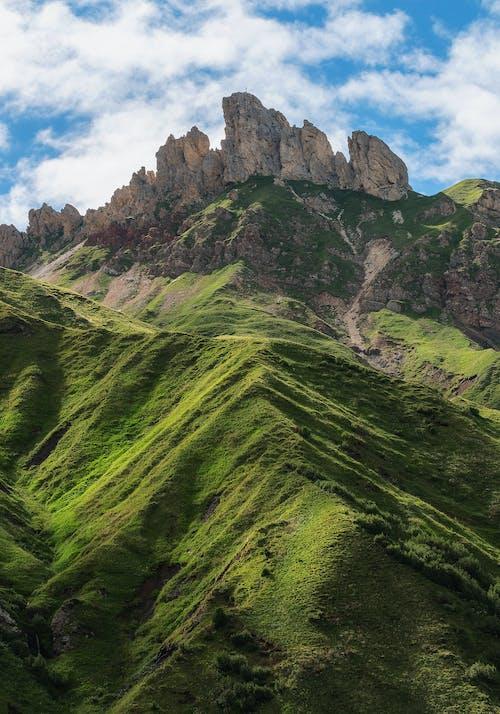 Gratis stockfoto met berg, bergen, boom