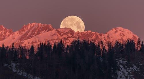 Gratis stockfoto met avond, berg, bergen