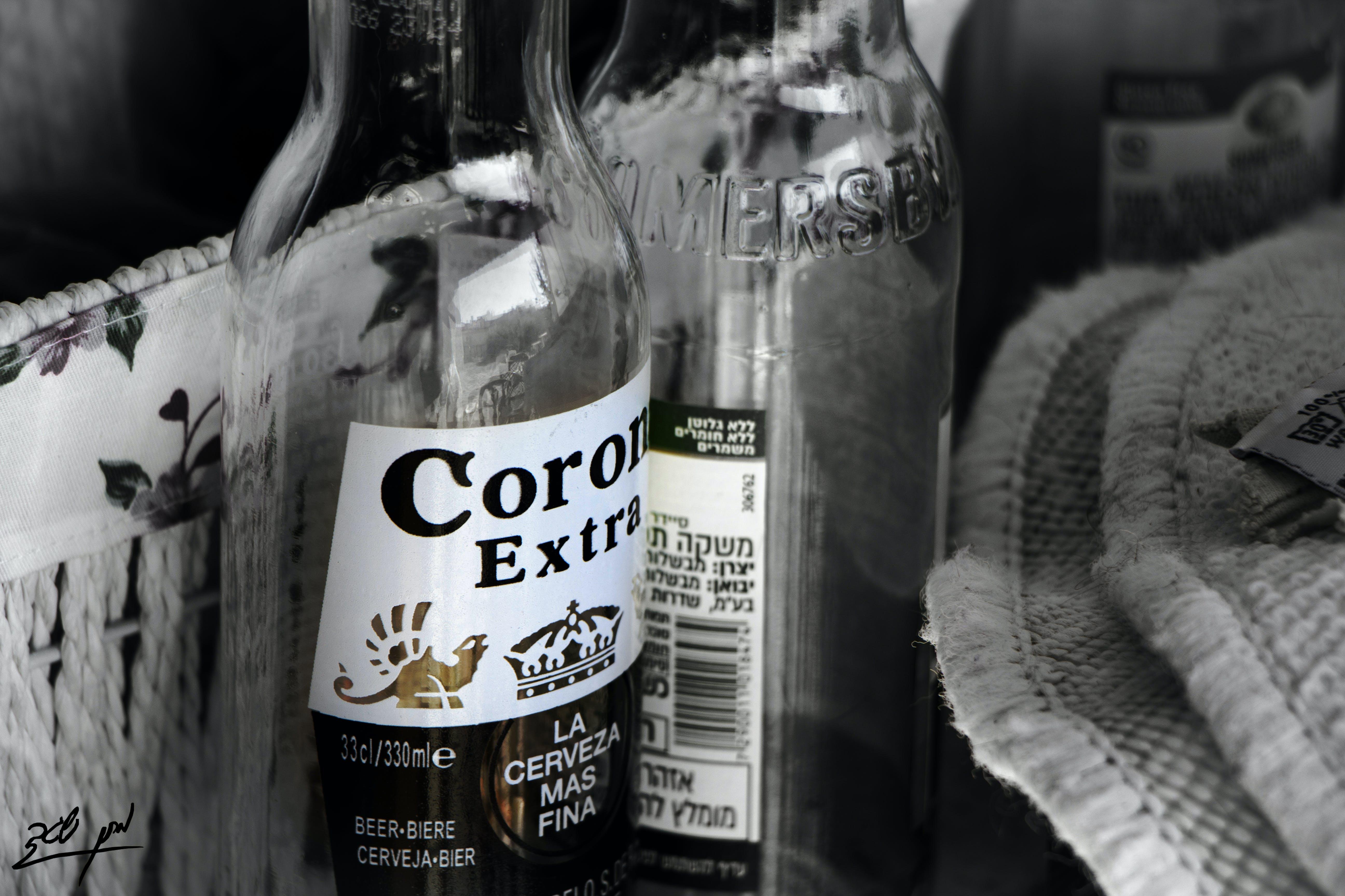 Free stock photo of beer, corona, drink, drinking