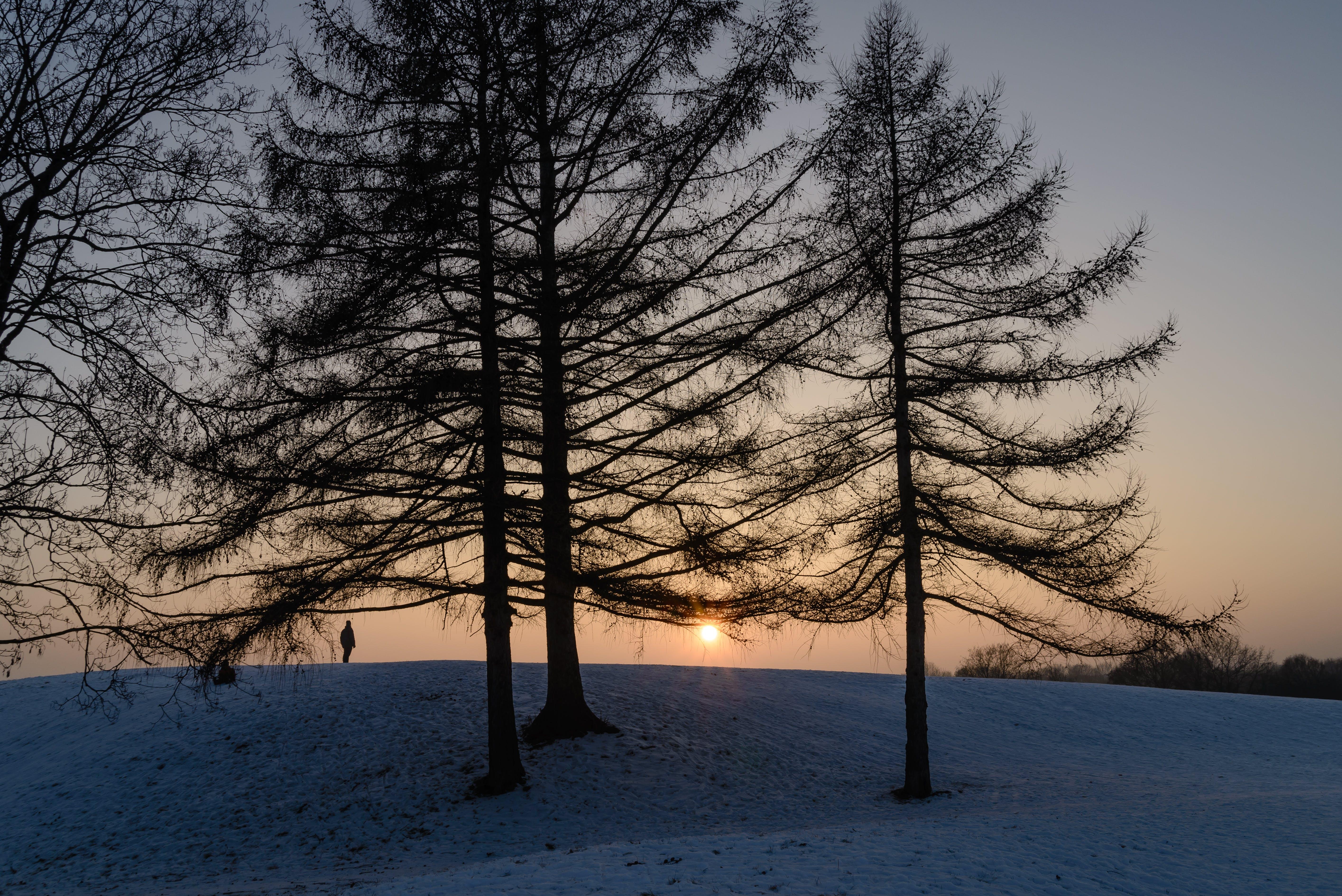 Kostenloses Stock Foto zu schnee, natur, sonnenuntergang, mann