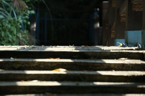 Free stock photo of ladder, walking trails
